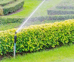 Sprinklers Systems / Irrigation